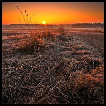 the_solstice_by_rad_ix